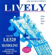 Mandoliinin kielet