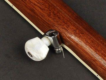 Richwood RMB-405 Master Series 5- kielinen Open Back banjo