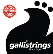 Galli LS-1152 teräskielisen kitaran kielet