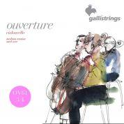 Galli Strings Ouverture OV61 3/4 sellon kielet