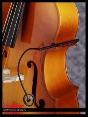 AMT S25B kontrabassomikrofoni