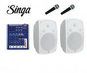 DAP-Audio aktiivikaiutinpari+kaksi mikkiä+mikseri+Singa nettikaraoke